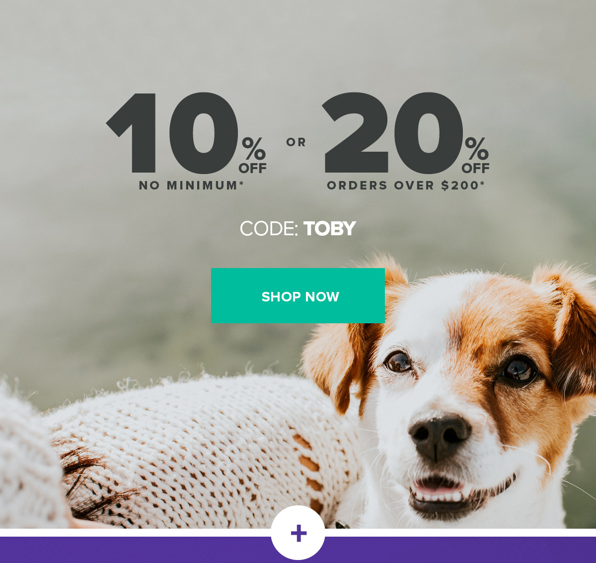 Making it Easy to Keep Your Dog Healthy | 10% off no minimum* or 20% off orders over $200* | code: TOBY | Shop Now